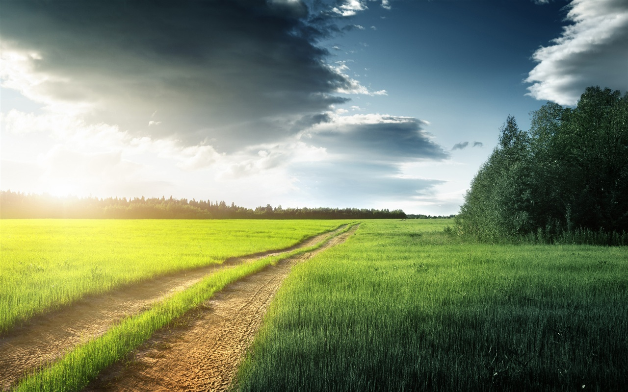 May 13, 2014- Walking with Jesus | Seeds for the Soul