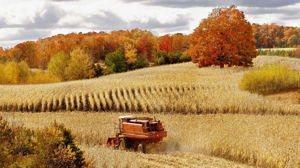 combine-harvester-in-a-corn-field-320279