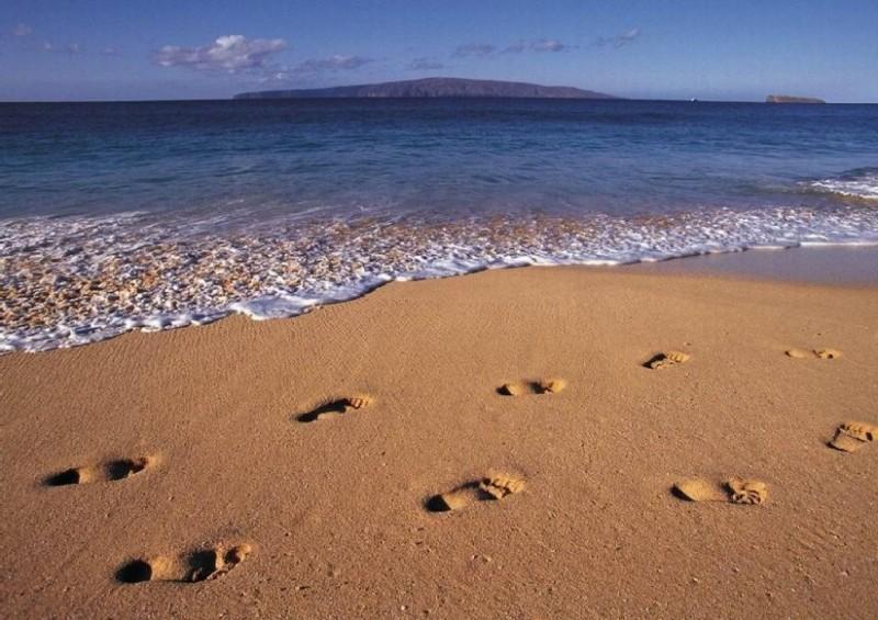 footprintswaterbeachnature31000