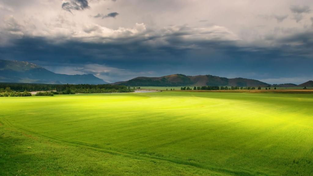 beautiful_green_grass_pastures_1920_x_1080_400