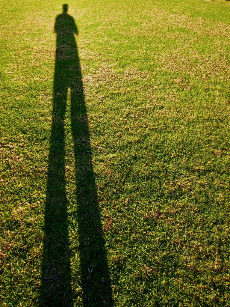 stand_tall__long_giant_on_green_park_grass_by_the_workz-d5vrj7d