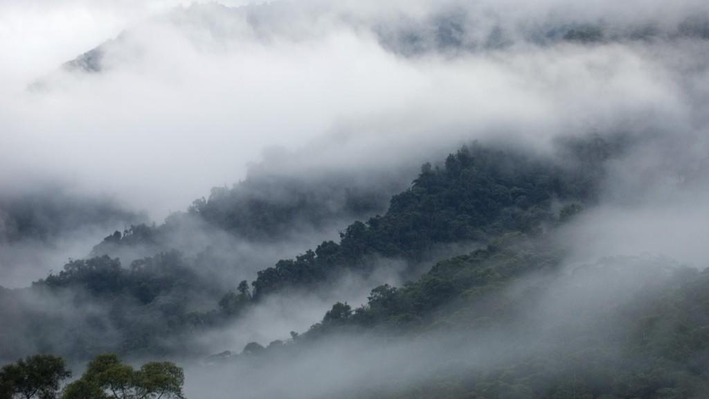 Nature___Mountains_Ecuadorian_fog_in_the_mountains_071532_