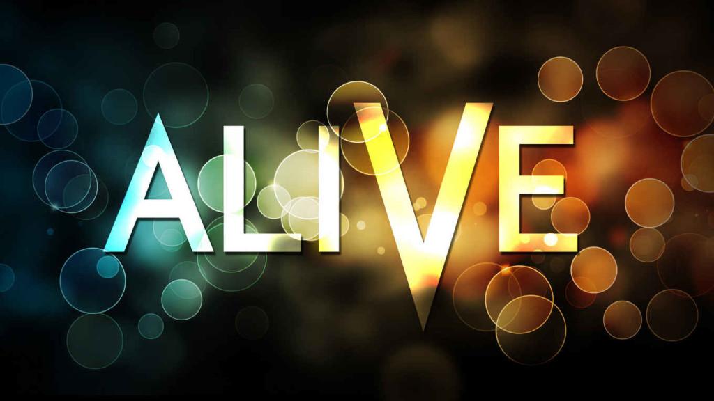 alive-006